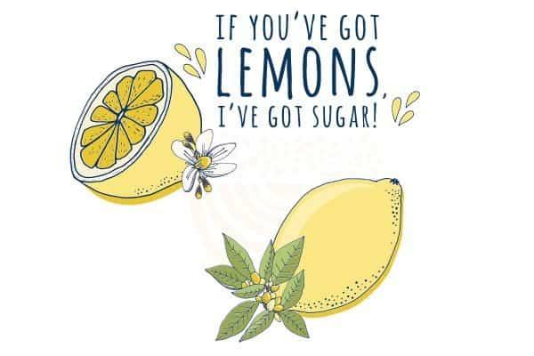 If You've Got Lemons, I've Got Sugar Digital Illustration